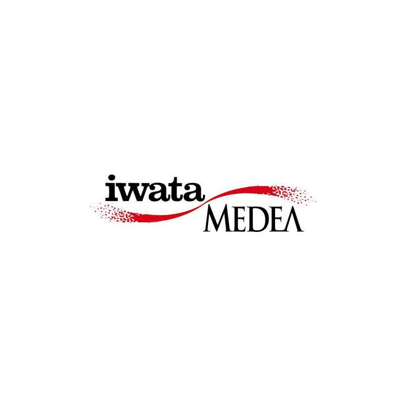 Pièces de remplacement IWATA